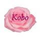 Kobo79